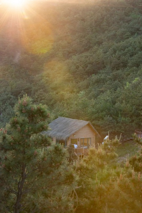 藏在秦皇岛的千亩童话庄园 树屋、窑洞、水上木屋……像是走进世外桃源!